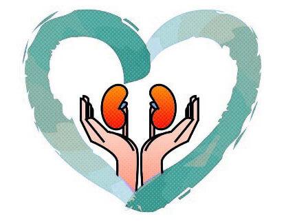 Отличие почечных отеков от сердечных