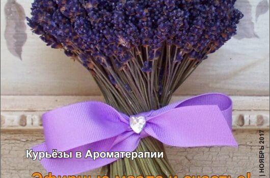 """Содержание выпусков Журнала""""АромаПрактикa"""""""